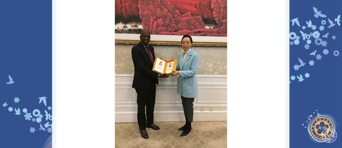Vice President Lin Yi Meets with Guinean Ambassador to China